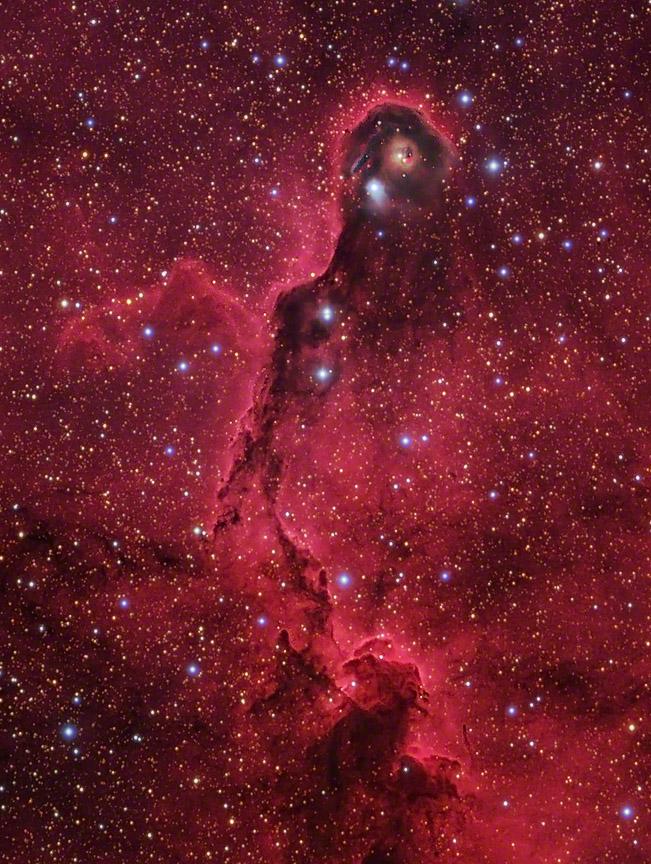 IC 1396 & The Elephant Trunk